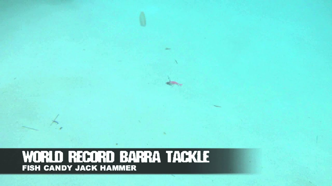 Fish candy jack hammer youtube for Hammer jack fish