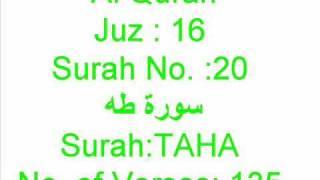AL QURAN Surah TAHA 1 to 61 recited...