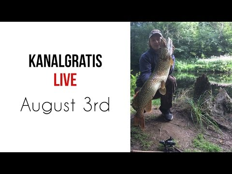 Live 3 th August - Celebrating 40k Subscribers
