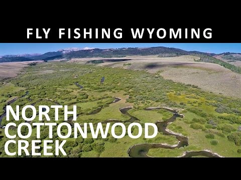 Fly Fishing North Cottonwood Creek Wyoming In August - Trailer For Full Show Amazon Video Season 7