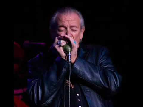 Charlie Musselwhite-Chan Chan (The Best Version)