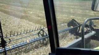 Australian harvest 09/10