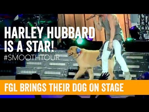 Florida Georgia Line Brings Their Dog ON STAGE