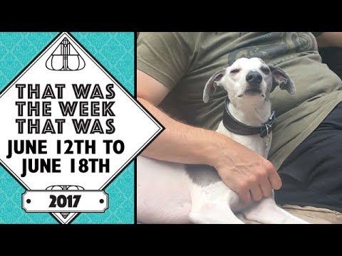 VLOG - That Was The Week That Was June 12th to June 18th 2017