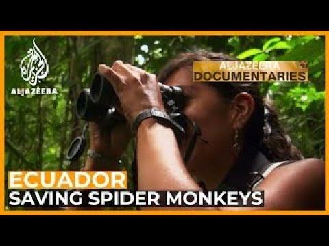 Women Make Science: Ecuador's Hidden Treasure | Featured Documentary