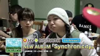 HY+BIGMAMA - Synchronicity Project Document ティザー