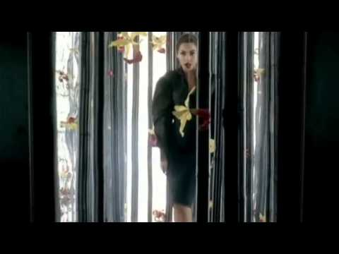 Shakira ft  Beyonce Beautiful liar  Music  HD