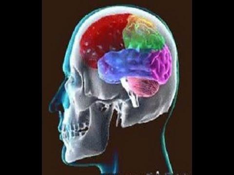 Webinar - Concussions