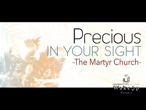 Precious in Your Sight: The Martyr Church
