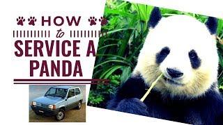 Come Fare il Tagliando Olio motore e filtro Fiat Panda 900 [Tutorial]