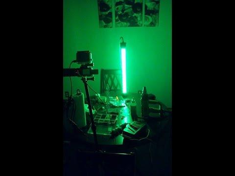 DIY Green Underwater Submersible Night Fishing Light