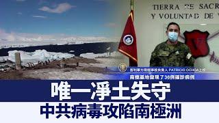 「唯一凈土」失守 中共病毒攻陷南極洲|@新唐人亞太電視台NTDAPTV |20201224 - YouTube