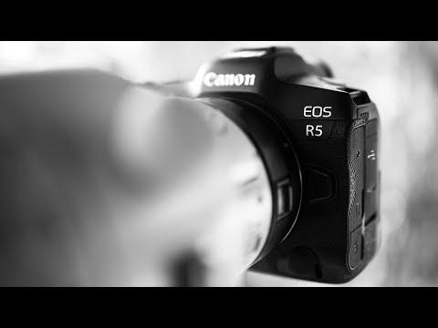 Canon EOS R5 Animal Eye Autofocus | First Impressions