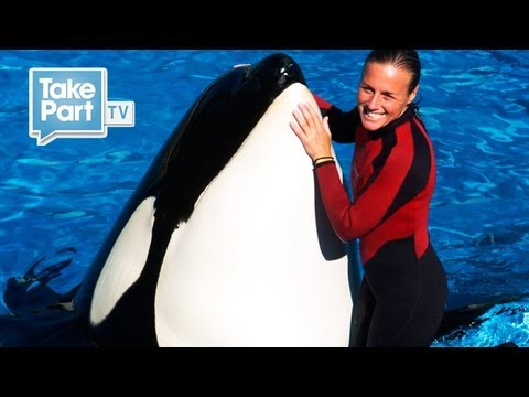 Death At SeaWorld Eyewitness Interview With Jessica Wilder | The Cove | TakePart