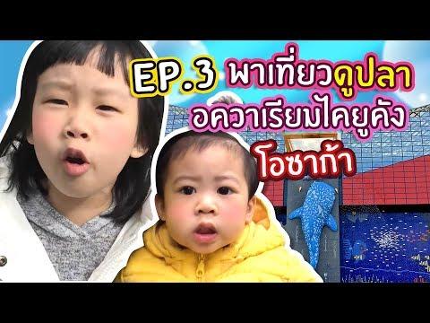 EP.3 ดูปลายักษ์! พิพิธภัณฑ์สัตว์น้ำไคยูคัง โอซาก้า ญี่ปุ่น .. จิน เรนนี่ | Little Monster