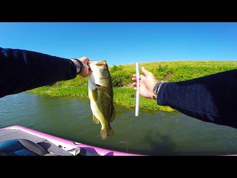 Banjo minnow fishing challenge doovi for Bass fishing challenge