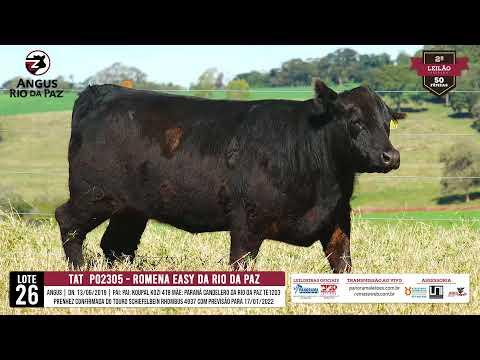 LOTE 26  TAT PO2305 ROMENA EASY DA RIO DA PAZ TE - Prod. Agência e TV El Campo