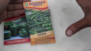 How To Grow Okra From Seeds | How To Grow Lady Finger From Seeds part-1 (Urdu/Hindi)
