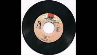 Download Gundelero Riddim Aka Storm Riddim Mix 1991 Tony Rebel,Wayne Wonder,Cobra+more (Penthouse Records) MP3 song and Music Video