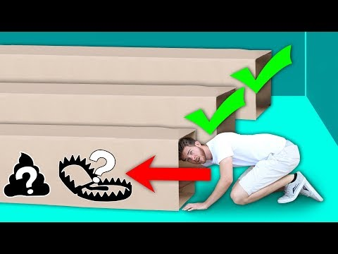 DONT Crawl Through the Wrong Mystery Box Tunnel!!