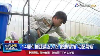 """14噸有機蔬菜沒人吃 縣府推""""宅配菜箱"""""""