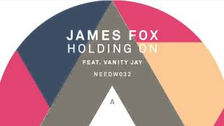 James Fox  - Holding On Feat. Vanity Jay (Medlar Remix)