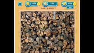 Найди животное 111, 112, 113, 114, 115, 116, 117, 118, 119, 120 уровень Одноклассники