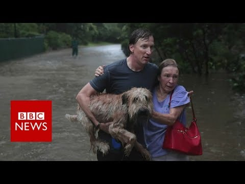 Hurricane Harvey: The story so far - BBC News