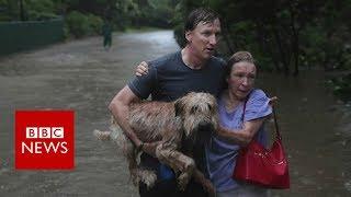 Hurricane harvey: the story so far - bbc news