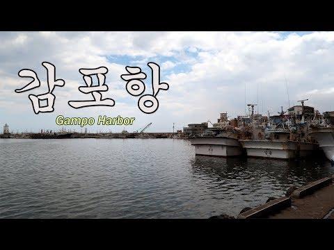 Walking in quiet Gampo Harbor in Gyeongju, South Korea |  �