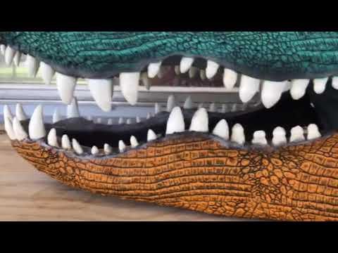 GO GATORS! Gator head hydro dipped