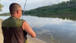 Рыбалка на воблу летом в Ахтубе с берега