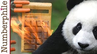 Calculator Unboxing #4 (Bamboo Calculator) - Numberphile thumbnail