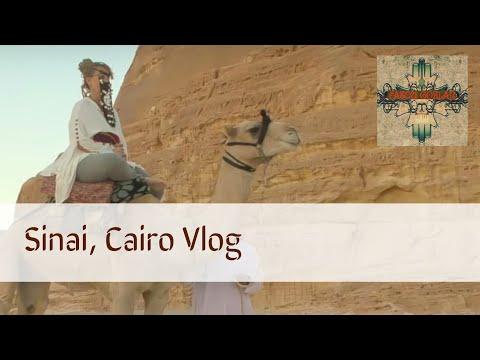 Egypt, Sinai Desert VLOG!