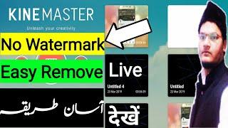 Photo Shari Master Index Subf — Pixlcorps