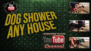 Funny dogs goes crazy over SHOWERS!! Any house, anywhere, any time!