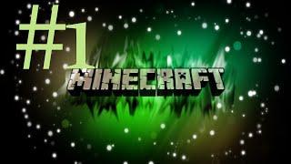 Minecraft #1 - Jak oni nas szybko łapią za oszustwa ? [Flare]