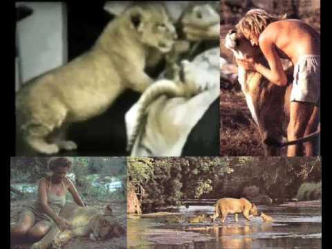 Elsa,  the lioness - Born Free - Her story edited by John Trueman