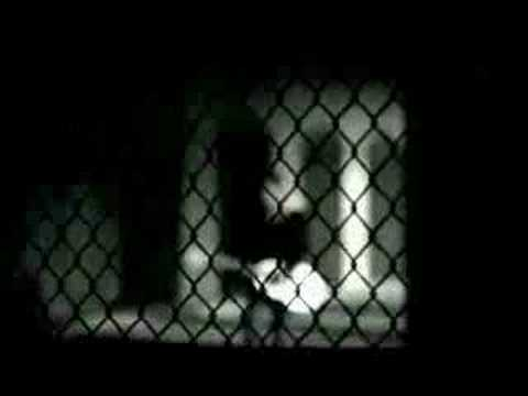 Les défis de la femme célibataire - Jocelyne Gomade YouTube · Durée:  28 minutes 7 secondes