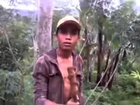 Lipsing kyai Anwar zahid lucu banget (asli ngakak)