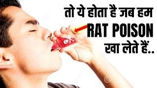 क्या होगा अगर हम RAT POISON खालें तो ?| What Happens If We Eat RAT POISON ? - RAT POISON EFFECTS