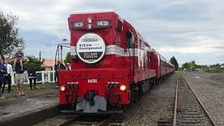 Deco Delights Express - Driver and passenger views – Woodville to Napier (New Zealand)