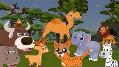 Apprendre les animaux de la savane - Apprendre les animaux sauvages en français