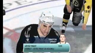 NHL 09 (PC) Fight