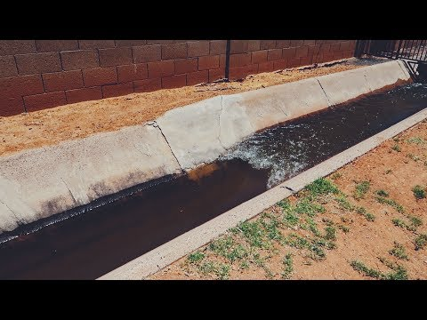 Flood Irrigation Day! ( & how this watering method works)