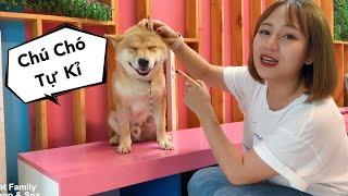 Vàng Ngày Đầu Ở Mật Pęt : Cách Làm Qขen Với Chó Bị Tự Kỉ - Thương Em