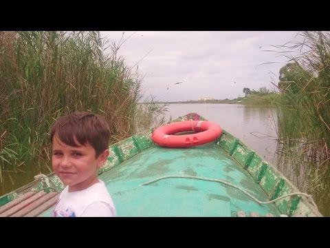 PASEO en BARCA para niños por la ALBUFERA de Valencia y CULTIVO  DE ARROZ