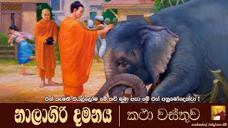 dharma-deshanawa