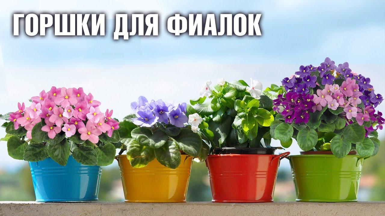 Удобрение можно купить в невском доме фиалки,ул. Розыгрыш трех наборов черенков фиалок состоится в 12:00 19 мая (суббота).