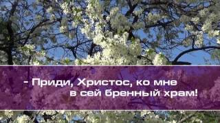 Игорь Игнатов. Душа моя, как птица